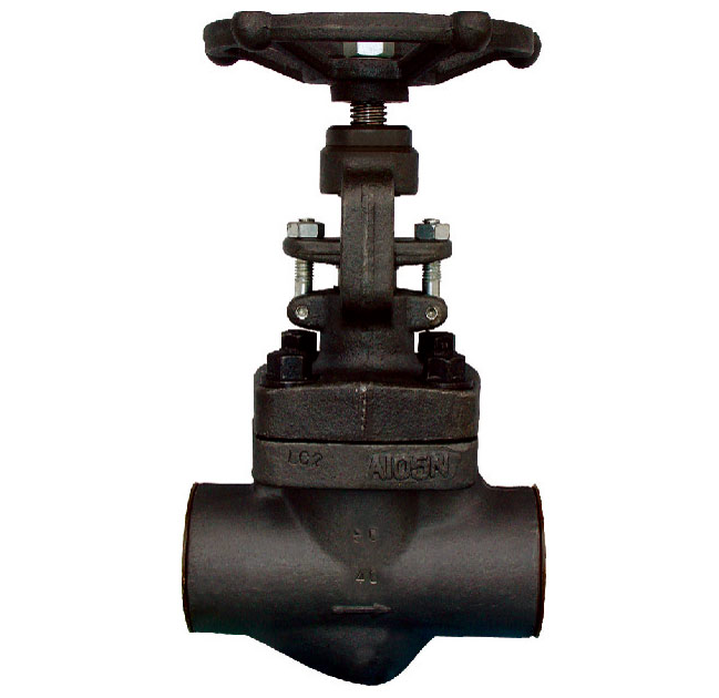 Forged Carbon & Stainless Steel Globe Valve